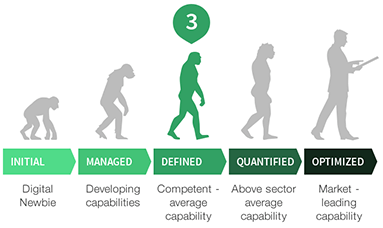 Digital transformation stages in the style of The Evolution of Man