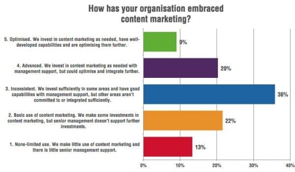 Managing content marketing capabilities