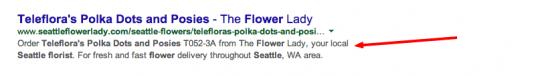 Onpage SEO Flower Lady