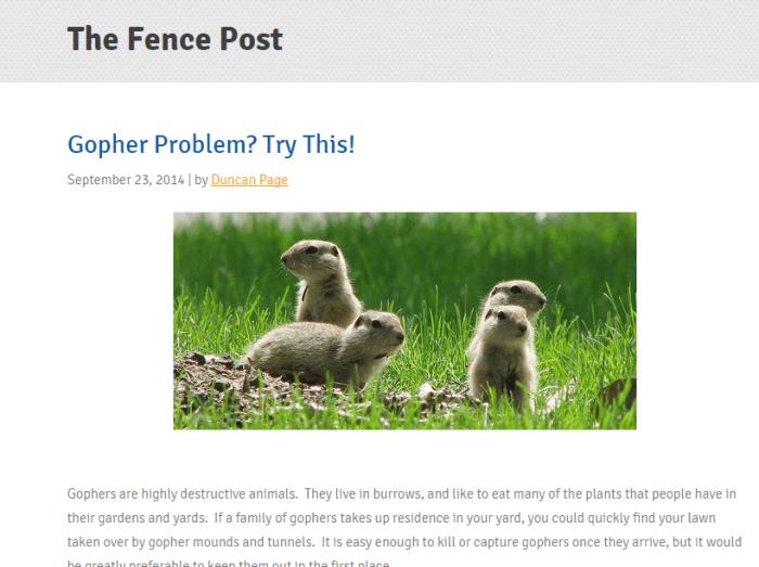 Fencepostgopherproblemlouispage