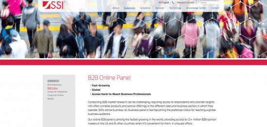 SSI B2B panel services