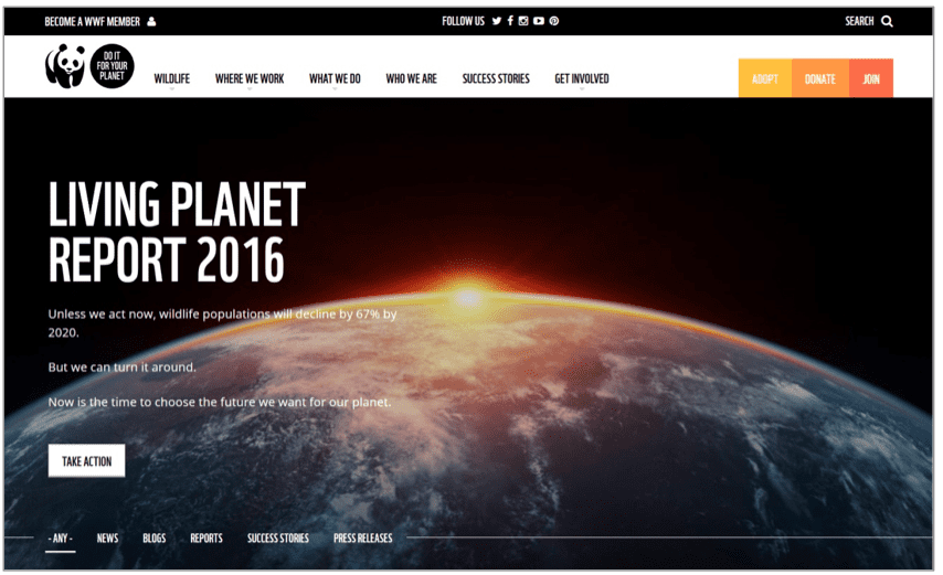 wff-website-design