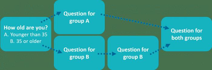 survey question type - skip logic explained