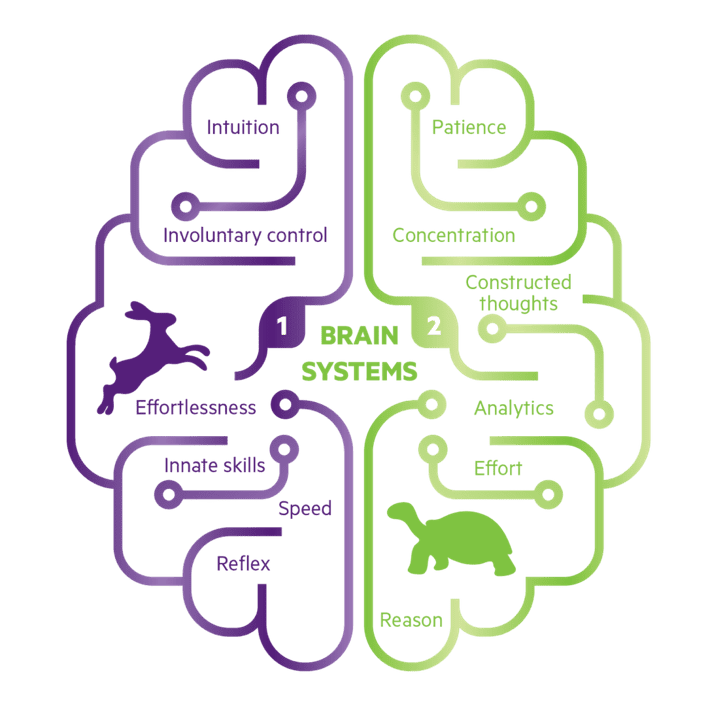 The brain's two systems