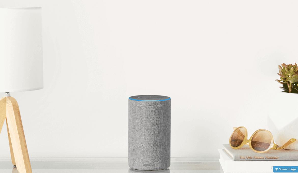 Amazon Light Grey Echo