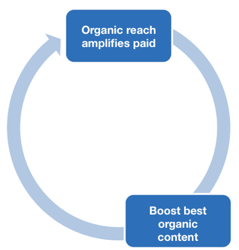 Integrated organic and paid strategy