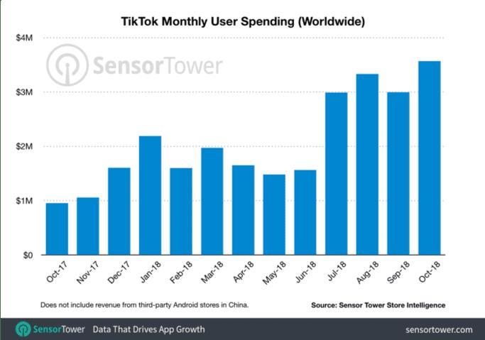 TikTok monthly spending
