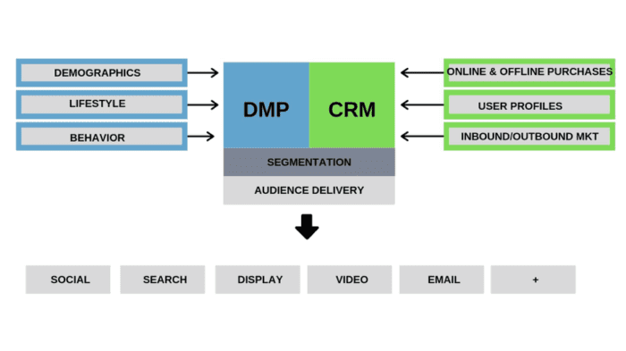 DMP and CRM