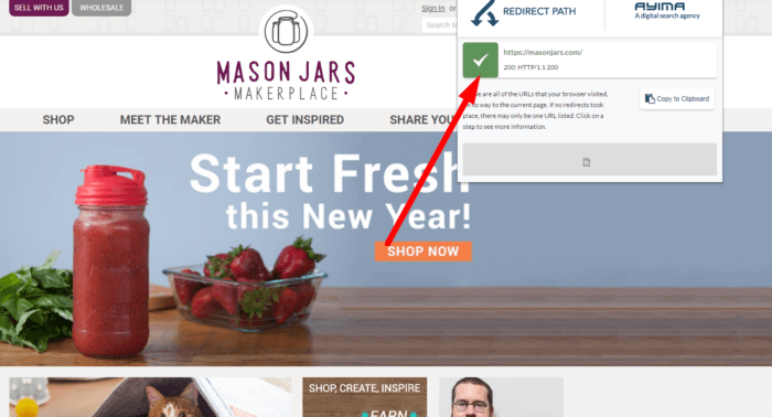 60 - Mason Jars SEO mistakes 3