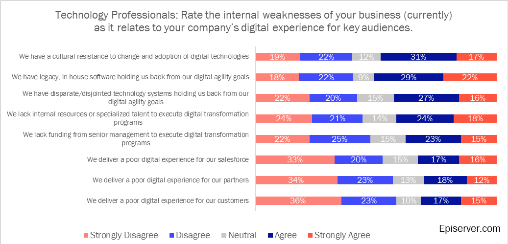 Technology professionals' internal weaknesses