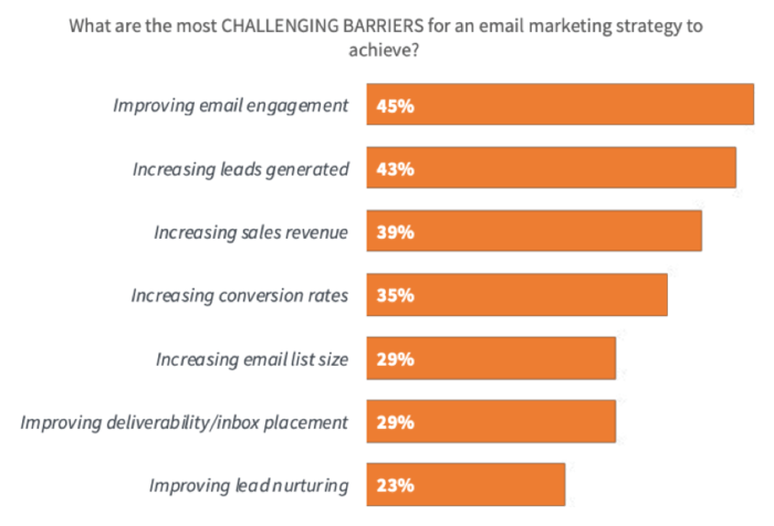 Biggest email marketing success barriers