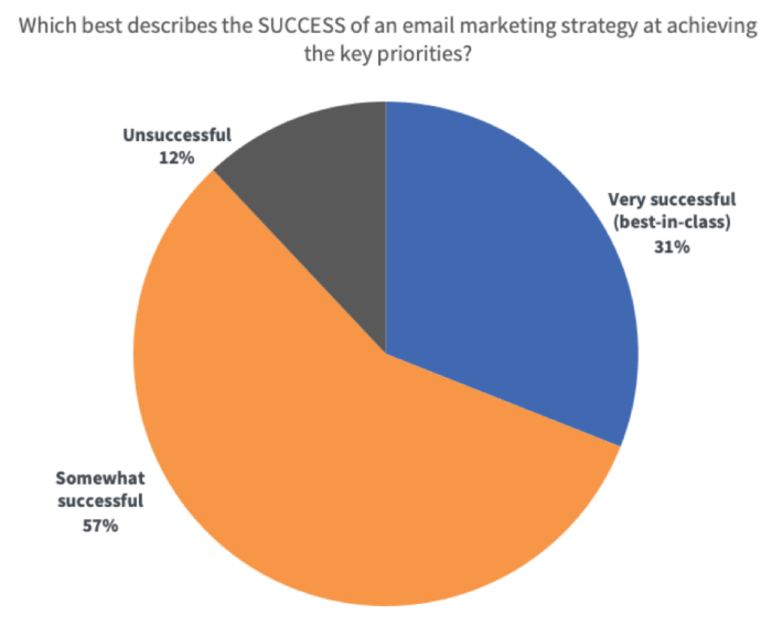 How successful are email marketing strategies at achieving goals?
