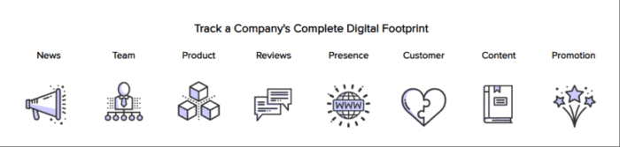 Track a company's digital footprint