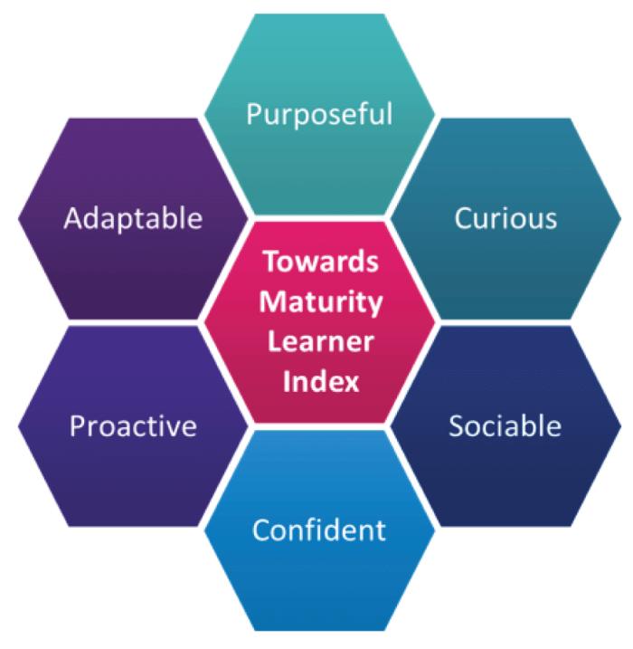 6 characteristics of modern learners