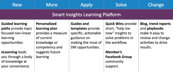Smart Insights' learning platform