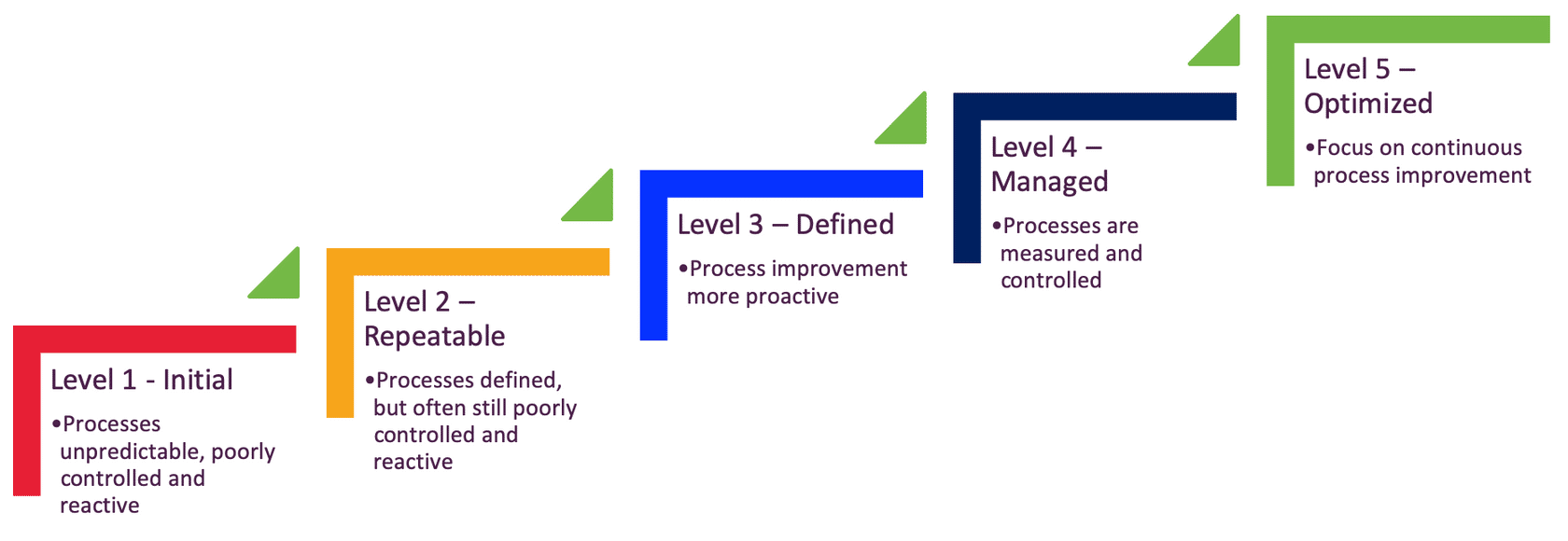 Digital Capability Maturity Review