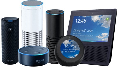 Connected commerec and voice search